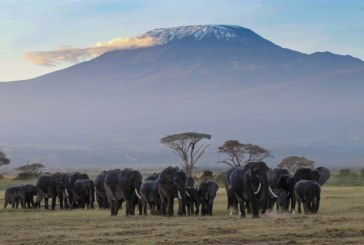 All you need to know for a safe trip to Mount Kilimanjaro, Africa