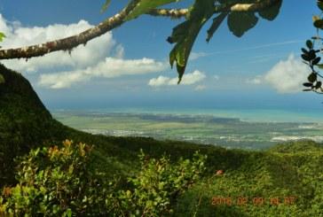 Things to do in El Yunque, Puerto Rico